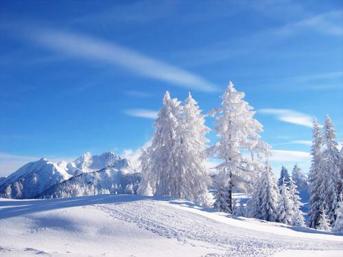 Зимняя фотография - пример фото